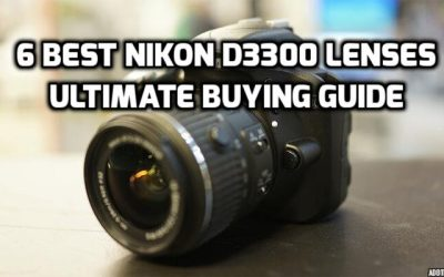 6 Best Lenses for Nikon D3300