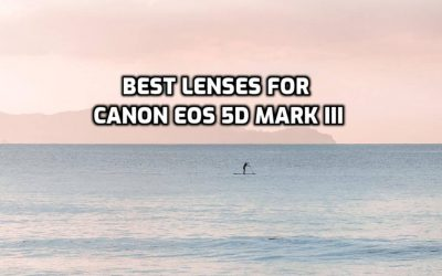 These are 5 Best Lenses for Canon EOS 5D Mark III [In 2021]