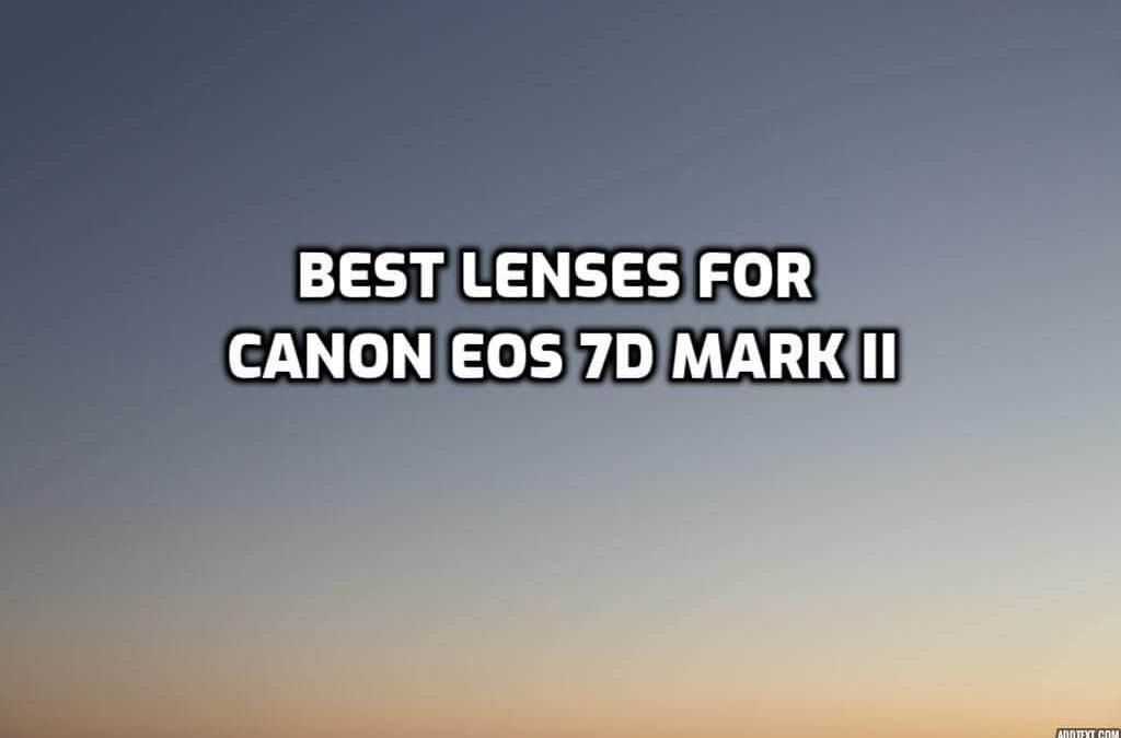 Best Lenses for Canon EOS 7D Mark II