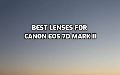These are 5 Best Lenses for Canon EOS 7D Mark II [In 2021]