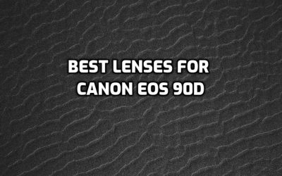These are 5 Best Lenses for Canon EOS 90D [In 2021]