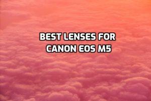 Best Lenses for Canon EOS M5
