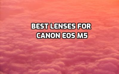 These are 5 Best Lenses for Canon EOS M5 [In 2021]