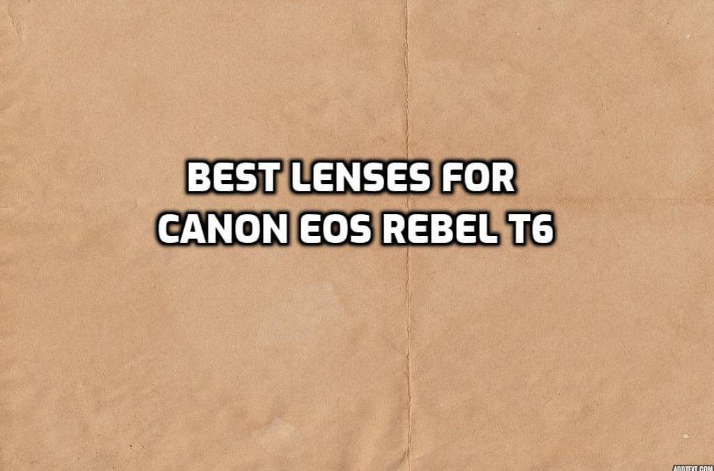 Best Lenses for Canon EOS Rebel T6