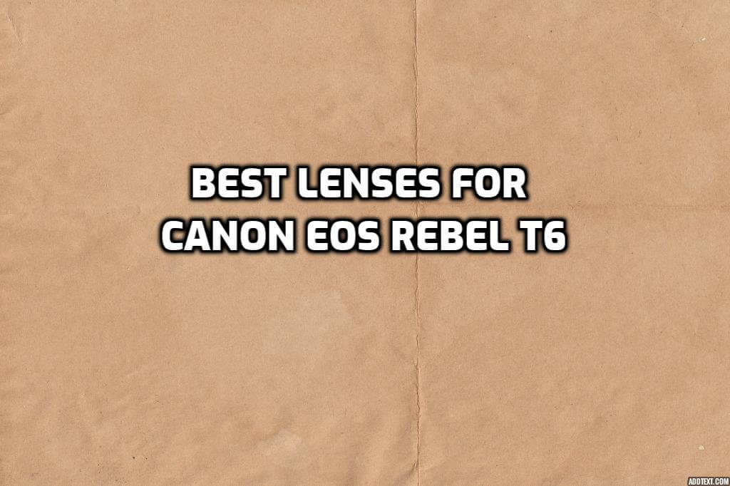 These are 5 Best Lenses for Canon EOS Rebel T6 [In 2021]