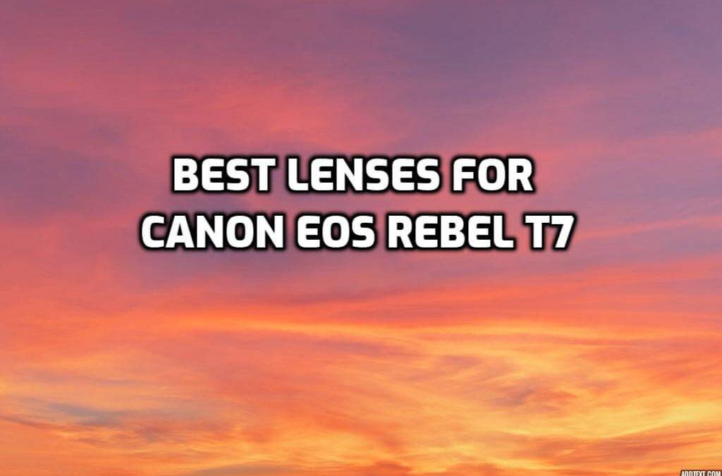 Best Lenses for Canon EOS Rebel T7