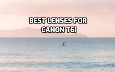 These are 5 MUST-HAVE lenses for Canon T6i [In 2020]