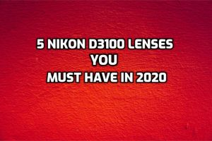Best Lenses for Nikon D3100 ultimate guide