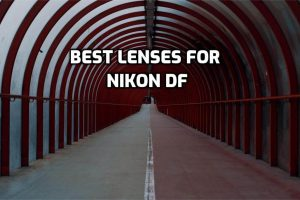 Best Lenses for Nikon Df