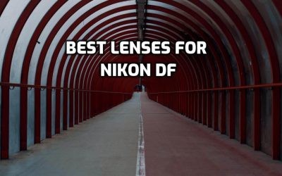 These are 5 Best Lenses for Nikon Df in 2020 (Ultimate Guide)