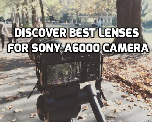 Best Lenses for Sony A6000 Camera