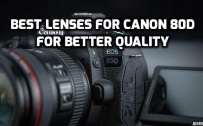 Best Lenses for Canon 80D in 2018