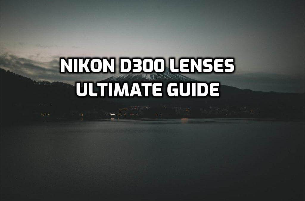 Best lenses for Nikon D300
