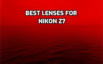 These are 5 Best Lenses for Nikon Z7 in 2021 (Ultimate Guide)