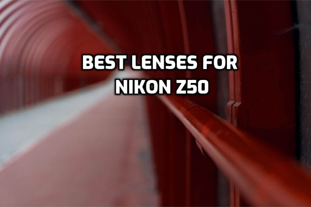 These are 5 Best Lenses for Nikon Z50 in 2021 (Ultimate Guide)