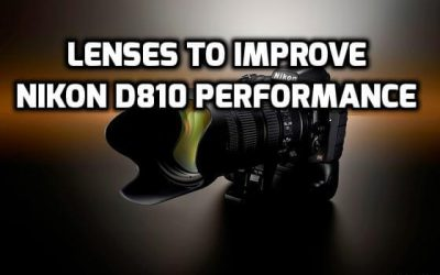 These are 6 MUST-HAVE lenses for Nikon D810 [In 2021]