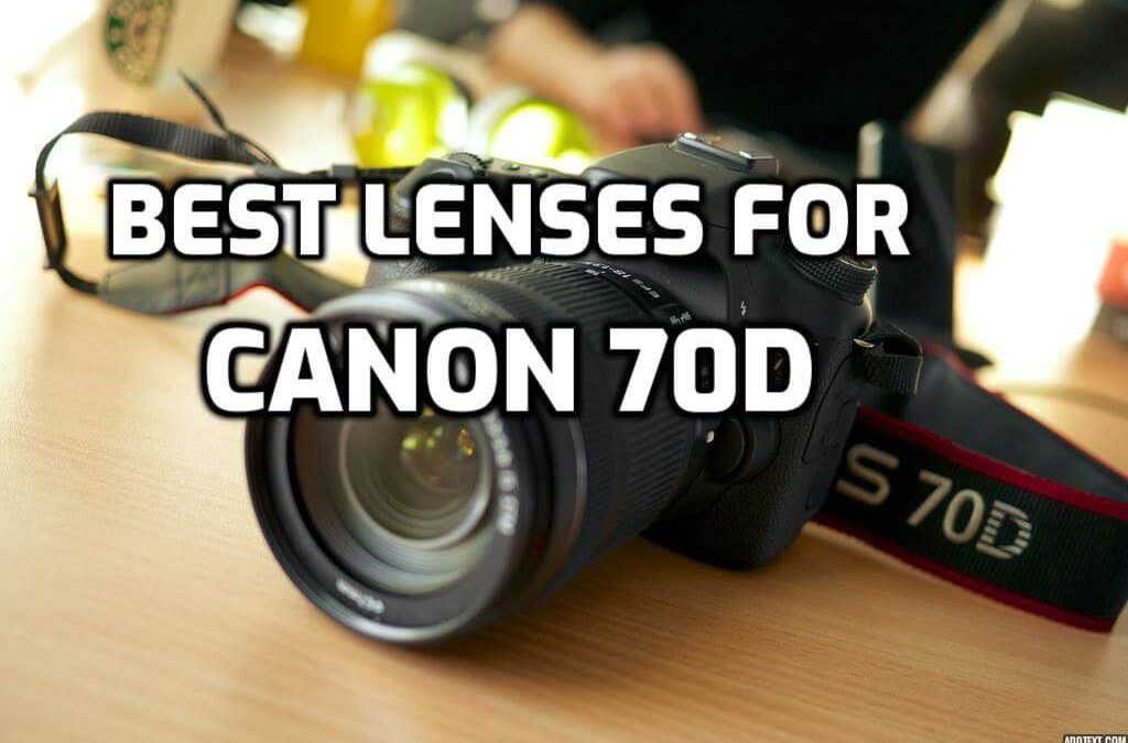 5 Best Lenses for Canon 70D to Take Better Photos in 2019
