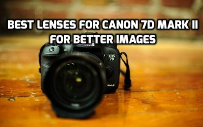 Best Lenses for Canon 7D Mark II in 2018