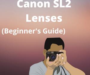 Best Lenses for Canon SL2 for Better Photos in 2021
