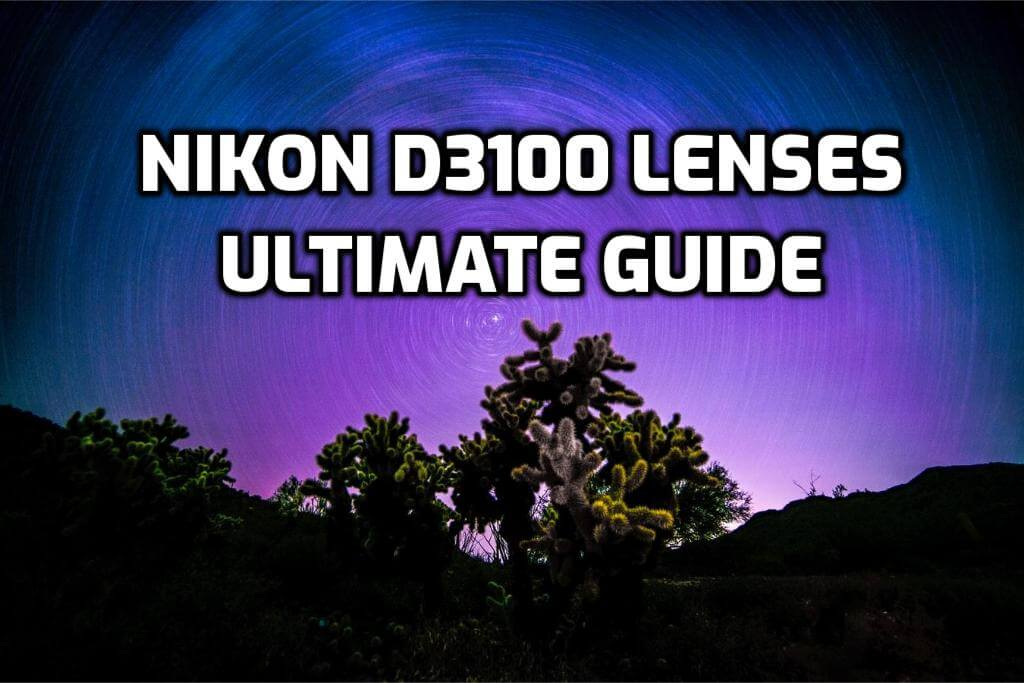 These are 5 MUST-HAVE lenses for Nikon D3100 [In 2020]