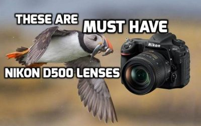 These are 6 MUST-HAVE lenses for Nikon D500 in 2019