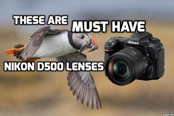 These are 6 MUST HAVE lenses for Nikon D500 in 2018