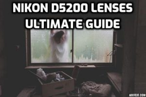 Preview image for Nikon D5200 lenses ultimate guide