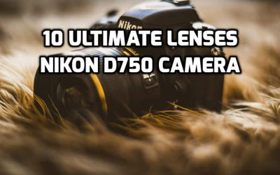 These 9 Best Nikon D750 Lenses Will Increase Camera Performance