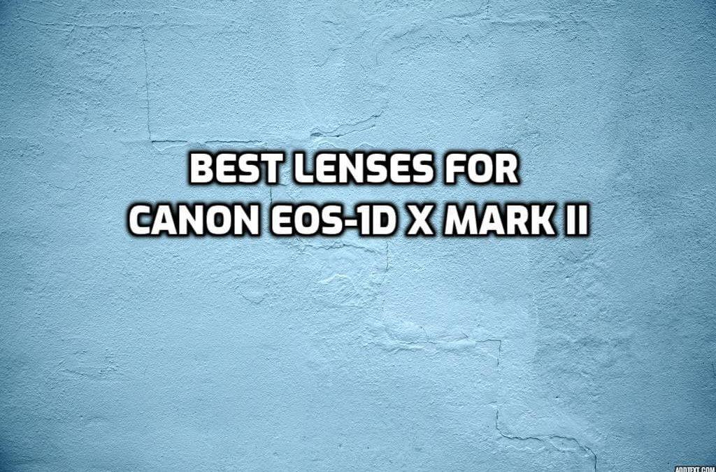 best lenses for Canon EOS-1D X Mark II