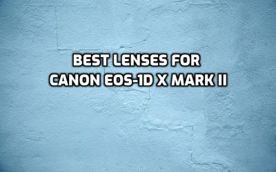 These are 5 MUST-HAVE lenses for Canon EOS-1D X Mark II [In 2021]