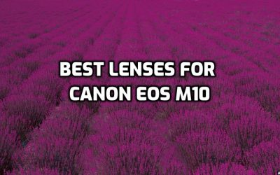 These are 5 MUST-HAVE lenses for Canon EOS M10 [In 2021]