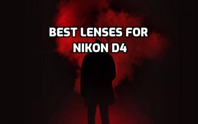 These are 5 Best Lenses for Nikon D4 in 2021 (Ultimate Guide)