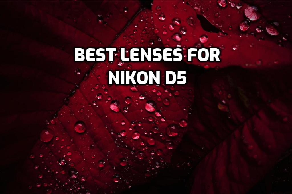 These are 5 Best Lenses for Nikon D5 in 2021 (Ultimate Guide)