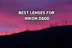best lenses for Nikon D600