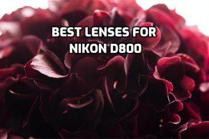 best lenses for Nikon D800