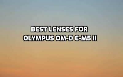 These are 5 Best Lenses for Olympus OM-D E-M5 II [In 2021]