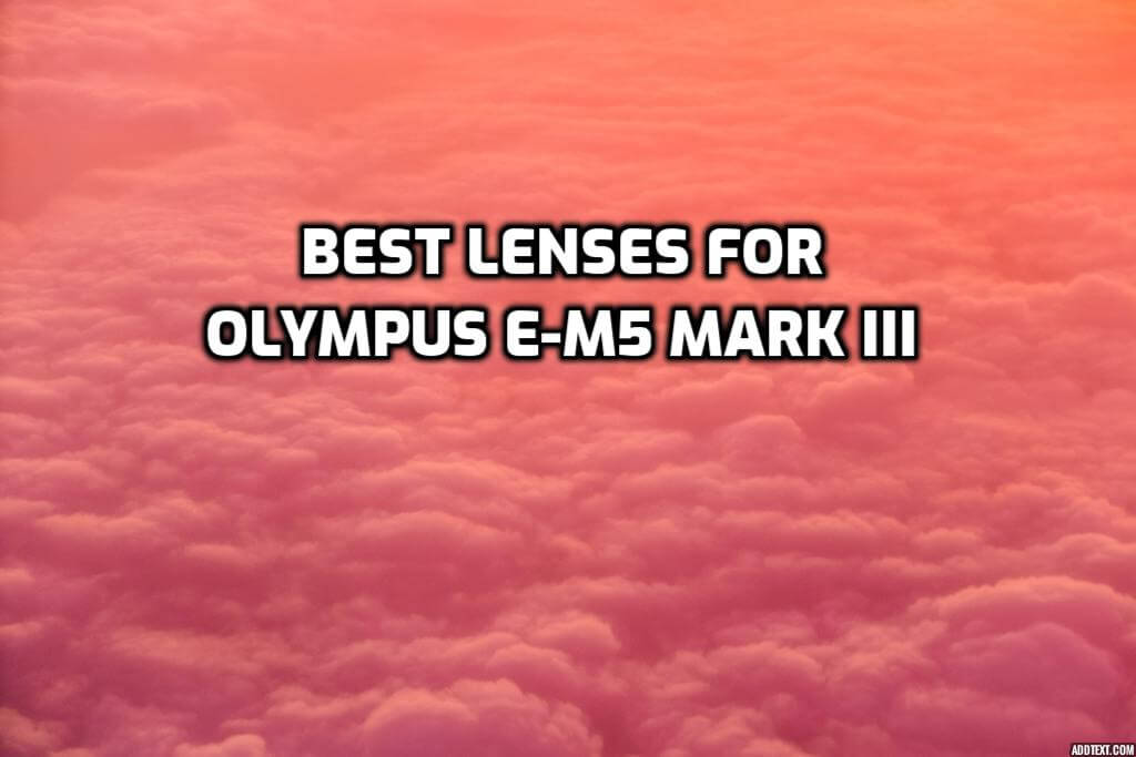These are 5 Best Lenses for Olympus OM-D E-M5 Mark III [In 2021]