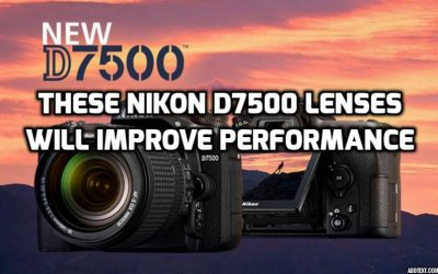 13 Best Lenses For Nikon D7500 Guaranteed To Increase Quality In 2018
