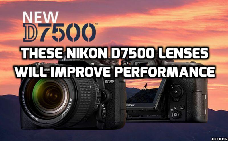 13 Best Lenses For Nikon D7500 Guaranteed To Increase Quality